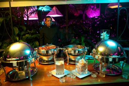 Agencias de festejos, Catering y Estaciones de comida